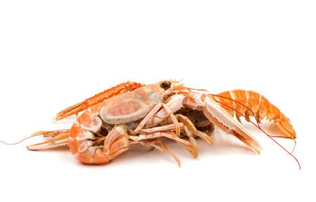 tenailles: crevettes avec des pinces isol�es sur fond blanc