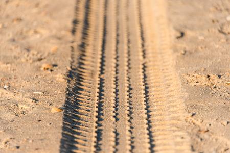 summer tire: car wheel tires print footprint on the beach gray sand