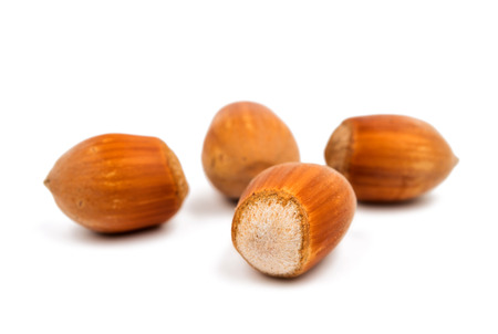 hazel: hazel nuts in the shell on a white background