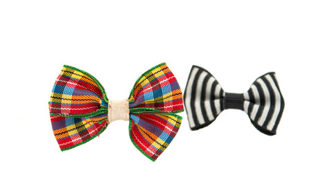 butterfly bow: butterfly bow on a white background