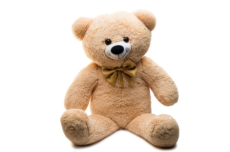 Big Bear soft toy isolated on white background