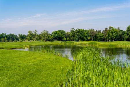 paisaje prado primavera con un lago Foto de archivo