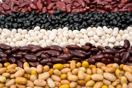 mixture: Mixture of different type of colorful beans