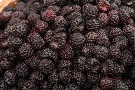 black raspberries: black raspberries on a white background Stock Photo