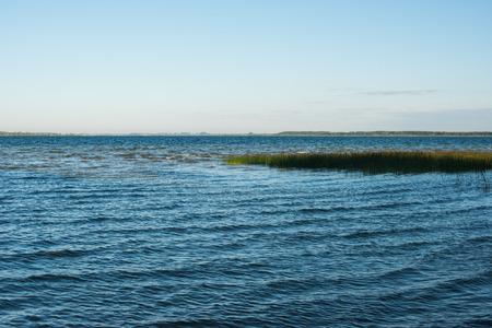 rushy: Summer rushy lake view Stock Photo