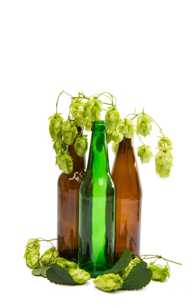 bottle with hop cones on white background