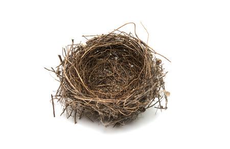 birds nest isolated on a white background