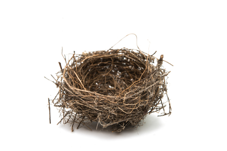 birds nest isolated on a white background