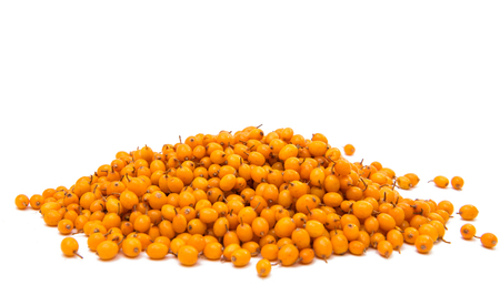 seabuckthorn: Sea-buckthorn berries on a white background Stock Photo