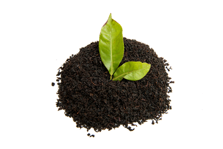 black tea with tea leaf isolated on white background