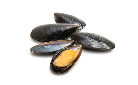 Mussels isolated on white background Stock Photo