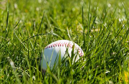 ballpark: Baseball in green grass