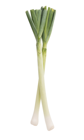 leek isolated on white background