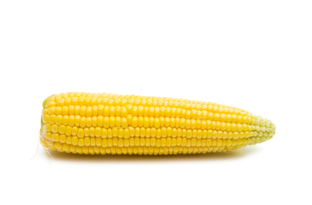 head of corn isolated on white background