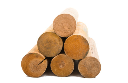 logs isolated on white background