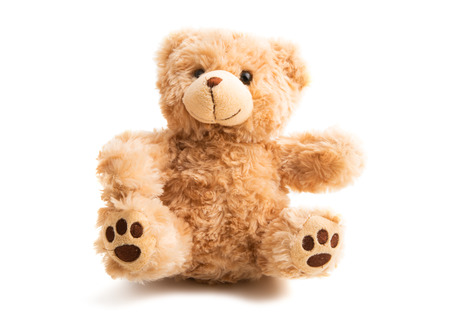teddy bear soft isolated on white background