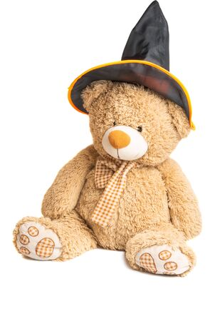 soft toy bear isolated on white background