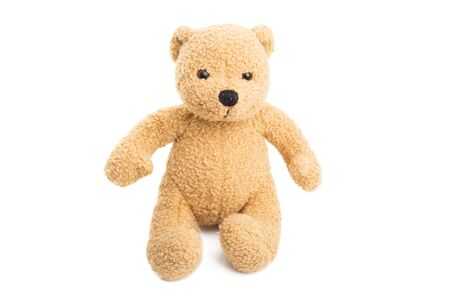 toy little bear isolated on white background