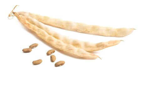dry bean pod isolated on white background