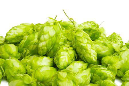 hop cones isolated on white background Stock fotó - 133401683