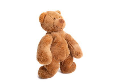 soft toy bear isolated on a white background