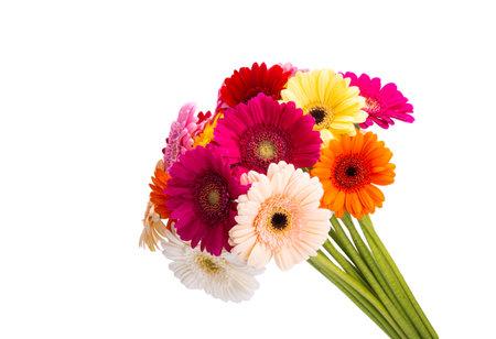 gerbera bouquet isolated on white background Zdjęcie Seryjne