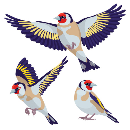 There are one sitting goldfinch and two flying goldfinches in cartoon style
