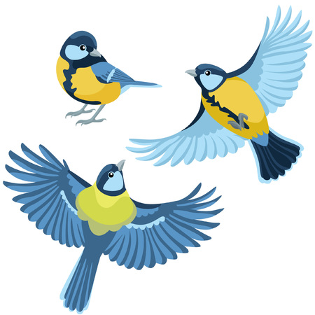 titmouse: There are one sitting titmouse and two flying titmouse in cartoon style