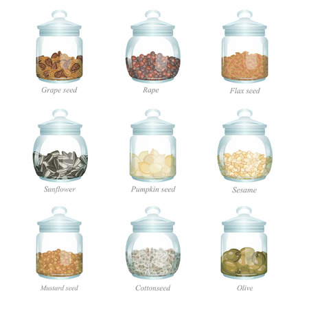 food storage: There are grape seeds, rape, flax seed, sunflower, pumpkin seed, sesame, mustard seed, cottonseed and olive in the glass jars Illustration
