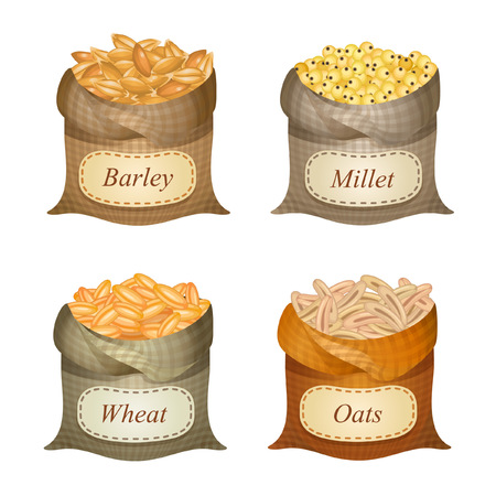 Untied sacks with barley, millet, wheat, oats and names on them