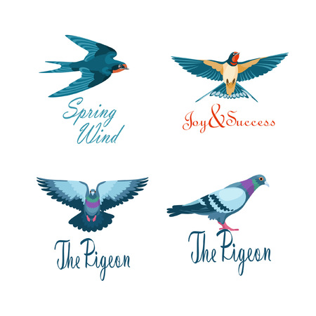 Four concepts of logotype with pigeons and swallows