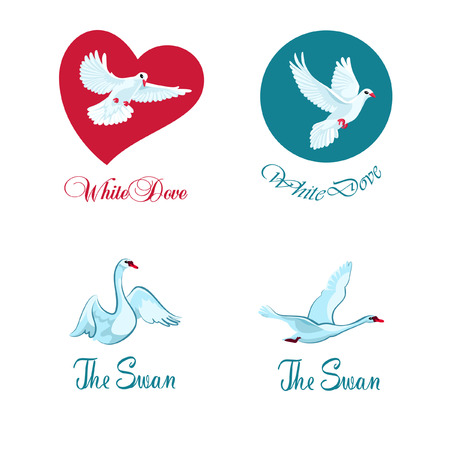 swans: Four concepts of logotype with doves and swans