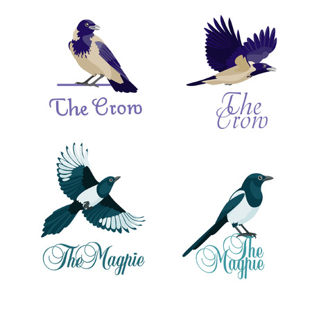 Four concepts of logotype with crows and magpies Illustration