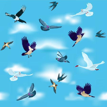 crows: Pigeons, white doves, magpie, crows, swan and swallows are flying among clouds in the sky Illustration