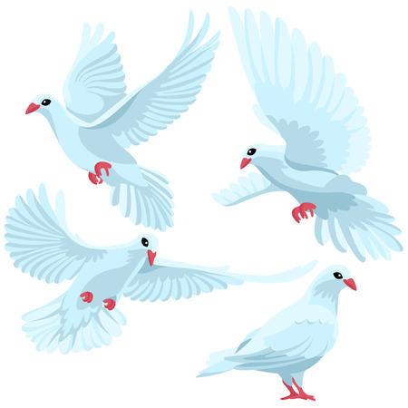beak doves: Four white doves in cartoon style Illustration