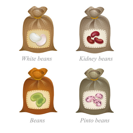 kidney bean: Tied sacks with white beans, kidney beans, green beans, pinto beans icons and names under them Illustration
