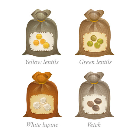sacs à égalité avec lentilles jaunes, lentilles vertes, lupin blanc, icônes de vesce et les noms sous les