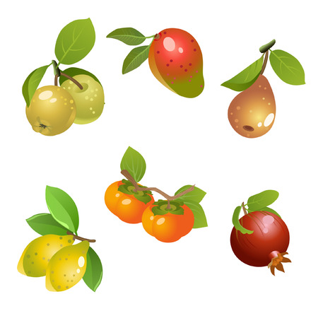 Varies type of fruits on white background