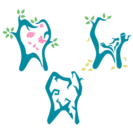 wilting: Dental health and tooth life stage concept