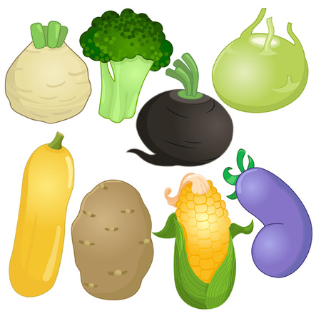vegatables: Various whole vegetables in cartoon style Illustration