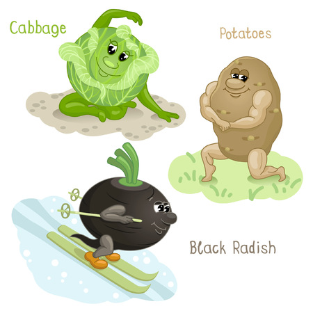 fruitage: Potato, black radish and cabbage are engaging in sports