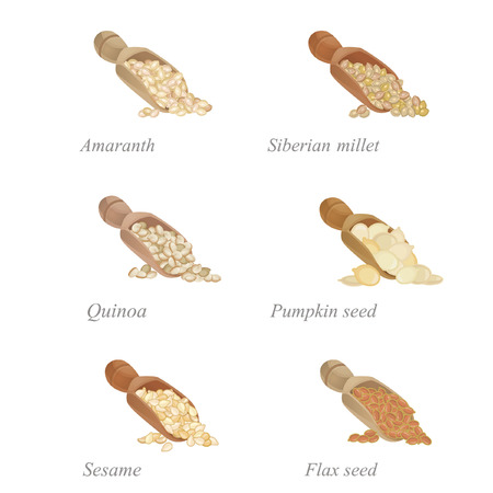flax: Six shovels with different cereals and oilseeds in them
