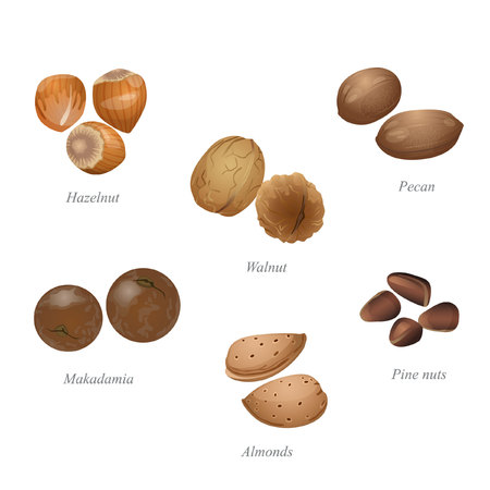 There are walnut, hazelnut, pine nuts, pecan, macadamia and almonds in their shells