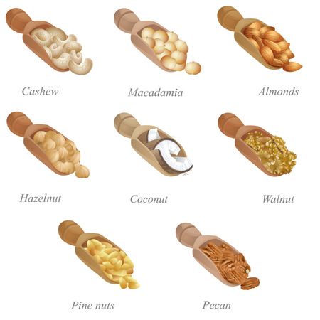 There are cashew, macadamia, almonds, hazelnut, coconut, walnut, pecan and pine nuts in the shovels