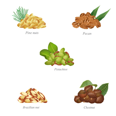 There are pine nuts, pecan, pistachios, Brazilian nuts and chestnut in the batches Illustration