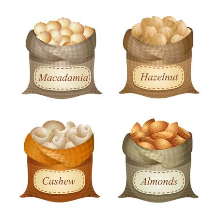 Four untied sacks with macadamia, hazelnut, cashew, almonds and names on them Ilustração