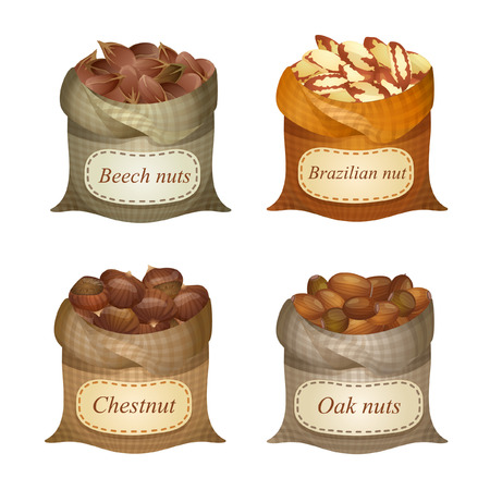Four untied sacks with beech nuts, oak nuts, Brazilian nuts, chestnuts and names on them