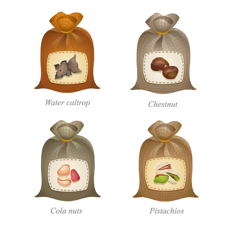Four tied sacks with water caltrop, chestnut, cola nuts, pistachios icons and names under them Ilustracja