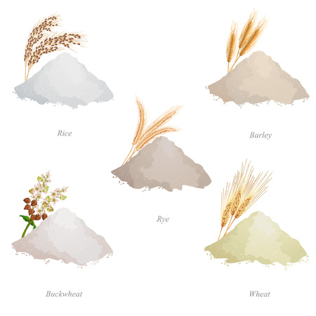 Barley, rye, buckwheat and wheat flour, ears and names