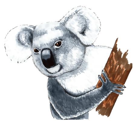 huggable: koala Illustration